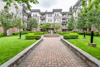 "Main Photo: 415 5430 201 Street in Langley: Langley City Condo for sale in ""The Sonnet"" : MLS®# R2329525"