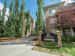 Main Photo: 102 8931 156 Street in Edmonton: Zone 22 Condo for sale : MLS®# E4139593