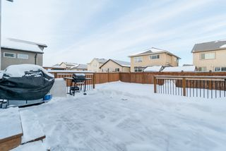 Photo 20: 27 Moonbeam Way in Winnipeg: Sage Creek Residential for sale (2K)  : MLS®# 1901220