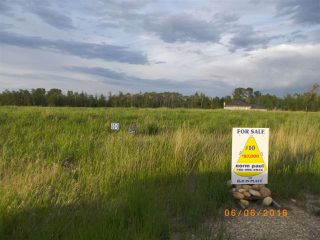 Photo 5: Twp 54 RR15: Rural Lac Ste. Anne County Rural Land/Vacant Lot for sale : MLS®# E4145787
