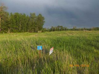 Photo 6: Twp 54 RR15: Rural Lac Ste. Anne County Rural Land/Vacant Lot for sale : MLS®# E4145787