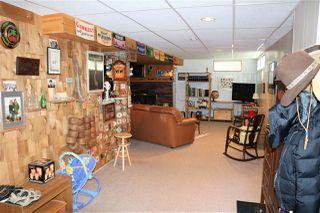 Photo 19: 11735 44 Avenue in Edmonton: Zone 16 House for sale : MLS®# E4163068