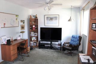 Photo 11: 11735 44 Avenue in Edmonton: Zone 16 House for sale : MLS®# E4163068