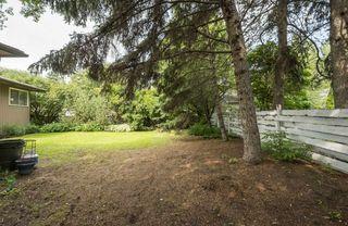 Photo 5: 5319 108 Street in Edmonton: Zone 15 House for sale : MLS®# E4164666