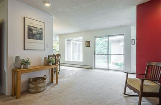 Photo 13: 5319 108 Street in Edmonton: Zone 15 House for sale : MLS®# E4164666
