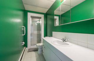 Photo 25: 5319 108 Street in Edmonton: Zone 15 House for sale : MLS®# E4164666