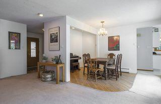 Photo 14: 5319 108 Street in Edmonton: Zone 15 House for sale : MLS®# E4164666
