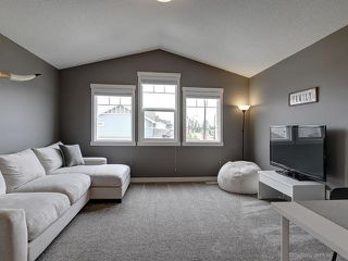 Photo 21: 221 BRICKYARD Cove: Stony Plain House for sale : MLS®# E4165164