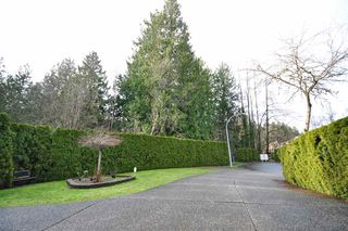 """Photo 2: 8916 206 Street in Langley: Walnut Grove House for sale in """"Forest Creek"""" : MLS®# R2433057"""