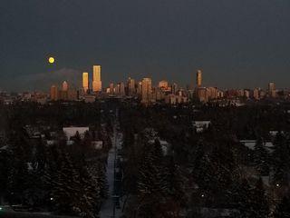 Photo 25: 1515 13910 STONY_PLAIN Road in Edmonton: Zone 11 Condo for sale : MLS®# E4193805