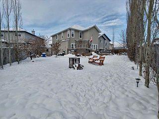 Photo 26: 16711 113 Street in Edmonton: Zone 27 House for sale : MLS®# E4221604