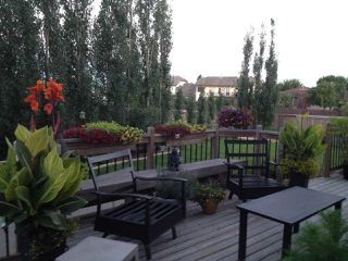 Photo 29: 16711 113 Street in Edmonton: Zone 27 House for sale : MLS®# E4221604