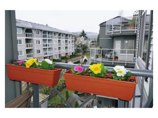 Photo 10: 304 2330 WILSON Avenue in Port Coquitlam: Central Pt Coquitlam Condo for sale : MLS®# V877984