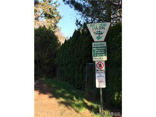 Photo 19: 4021 Hessington Pl in VICTORIA: SE Arbutus Single Family Detached for sale (Saanich East)  : MLS®# 693379