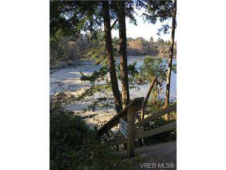 Photo 20: 4021 Hessington Pl in VICTORIA: SE Arbutus Single Family Detached for sale (Saanich East)  : MLS®# 693379
