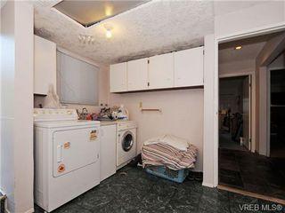 Photo 13: 4021 Hessington Pl in VICTORIA: SE Arbutus Single Family Detached for sale (Saanich East)  : MLS®# 693379