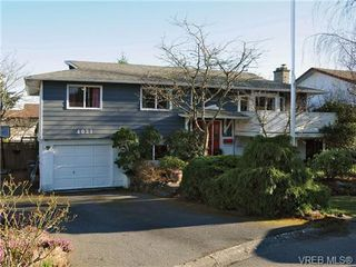 Photo 18: 4021 Hessington Place in VICTORIA: SE Arbutus Single Family Detached for sale (Saanich East)  : MLS®# 347204