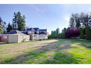 """Photo 19: 5788 126TH Street in Surrey: Panorama Ridge House for sale in """"PANORAMA RIDGE"""" : MLS®# F1451487"""