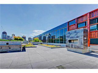 Photo 31: 505 235 9A Street NW in Calgary: Sunnyside Condo for sale : MLS®# C4077475