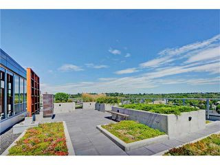 Photo 30: 505 235 9A Street NW in Calgary: Sunnyside Condo for sale : MLS®# C4077475