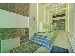 Photo 35: 505 235 9A Street NW in Calgary: Sunnyside Condo for sale : MLS®# C4077475