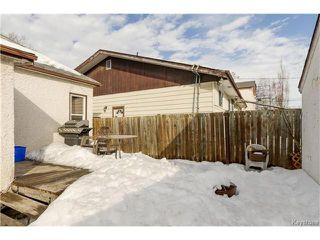 Photo 17: 372 Eugenie Street in Winnipeg: Norwood Residential for sale (2B)  : MLS®# 1703322