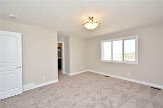 Photo 43: 52 Savanna Road NE in Calgary: Saddle Ridge House for sale : MLS®# C4119489