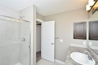 Photo 47: 52 Savanna Road NE in Calgary: Saddle Ridge House for sale : MLS®# C4119489