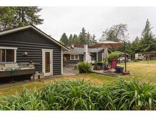 Photo 15: 26087 102 Avenue in Maple Ridge: Thornhill MR House for sale : MLS®# R2172464