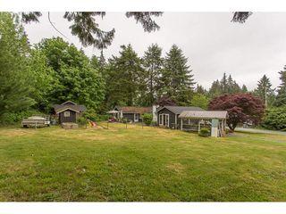 Photo 16: 26087 102 Avenue in Maple Ridge: Thornhill MR House for sale : MLS®# R2172464