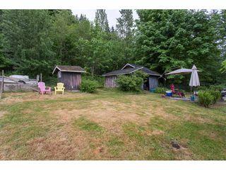 Photo 19: 26087 102 Avenue in Maple Ridge: Thornhill MR House for sale : MLS®# R2172464