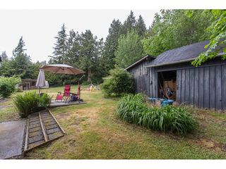 Photo 17: 26087 102 Avenue in Maple Ridge: Thornhill MR House for sale : MLS®# R2172464