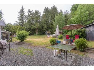 Photo 18: 26087 102 Avenue in Maple Ridge: Thornhill MR House for sale : MLS®# R2172464
