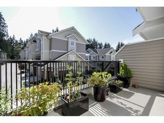 Photo 11: 19 2925 KING GEORGE Blvd in South Surrey White Rock: Home for sale : MLS®# F1420257