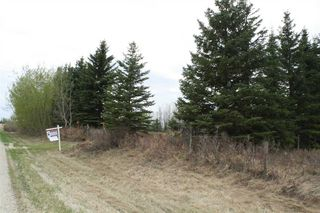 Photo 8: RR11 Twp 531: Rural Parkland County Rural Land/Vacant Lot for sale : MLS®# E4092985