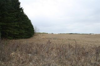 Photo 7: RR11 Twp 531: Rural Parkland County Rural Land/Vacant Lot for sale : MLS®# E4092985