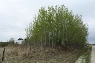 Photo 18: RR11 Twp 531: Rural Parkland County Rural Land/Vacant Lot for sale : MLS®# E4092985
