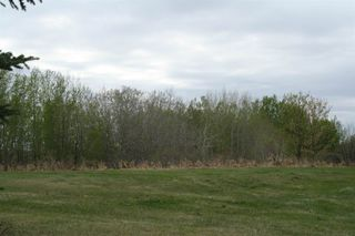 Photo 3: RR11 Twp 531: Rural Parkland County Rural Land/Vacant Lot for sale : MLS®# E4092985