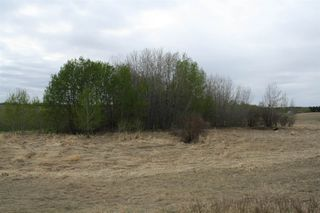 Photo 15: RR11 Twp 531: Rural Parkland County Rural Land/Vacant Lot for sale : MLS®# E4092985
