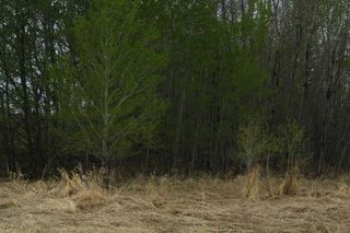 Photo 17: RR11 Twp 531: Rural Parkland County Rural Land/Vacant Lot for sale : MLS®# E4092985