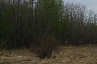 Photo 13: RR11 Twp 531: Rural Parkland County Rural Land/Vacant Lot for sale : MLS®# E4092985