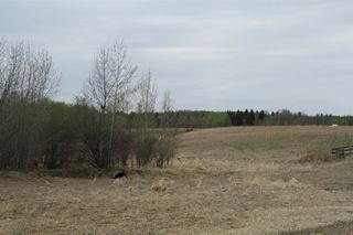 Photo 12: RR11 Twp 531: Rural Parkland County Rural Land/Vacant Lot for sale : MLS®# E4092985
