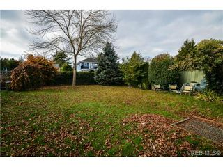 Photo 10: 342 Arnold Avenue in VICTORIA: Vi Fairfield East Residential for sale (Victoria)  : MLS®# 332824