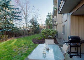 Photo 18: 109 32063 MT WADDINGTON AVENUE in Abbotsford: Abbotsford West Condo for sale : MLS®# R2249050