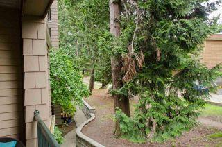 "Photo 17: 219 5518 14 Avenue in Delta: Cliff Drive Condo for sale in ""WINDSOR WOODS"" (Tsawwassen)  : MLS®# R2310878"