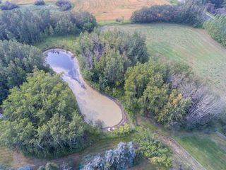 Photo 8: 53247 RR221: Rural Strathcona County House for sale : MLS®# E4137782