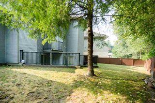 Photo 19: 16046 98B Avenue in Surrey: Fleetwood Tynehead House for sale : MLS®# R2330465