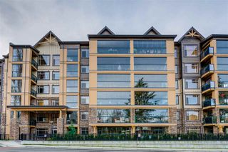"""Main Photo: 227 8157 207 Street in Langley: Willoughby Heights Condo for sale in """"Yorkson Creek - Parkside 2"""" : MLS®# R2331521"""
