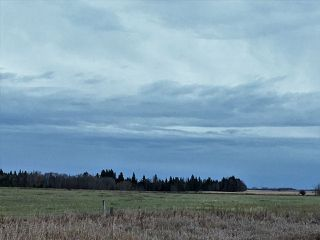 Photo 3: Highway 2A: Rural Wetaskiwin County Rural Land/Vacant Lot for sale : MLS®# E4144680