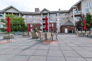 Photo 16: #112 200 BETHEL DR: Sherwood Park Condo for sale : MLS®# E4145760